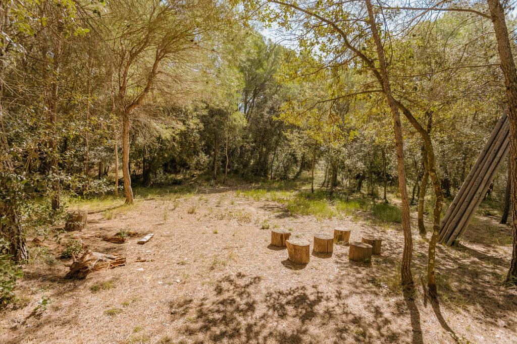 claro en un bosque para boda en Mas Terrats