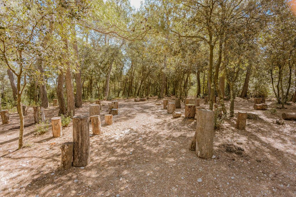 bosque grande para celebrar una boda en Mas Terrats