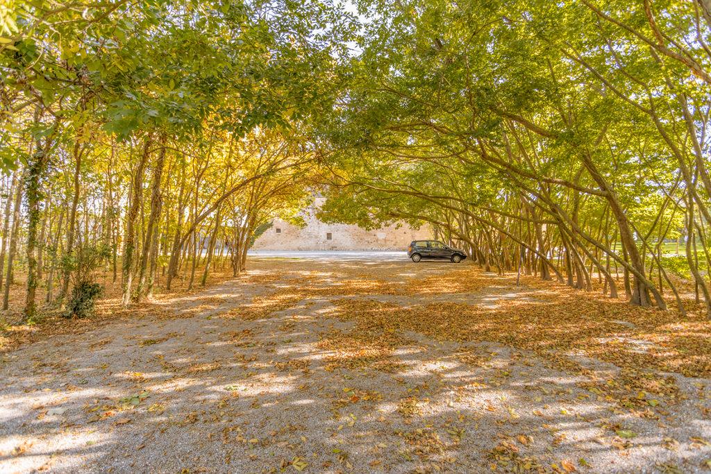 Capilla de árboles para boda en Cortal Gran
