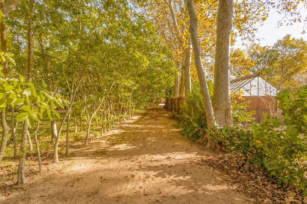 Camino invitados Boda en Cortal Gran